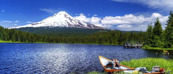 Oregon turns to startups